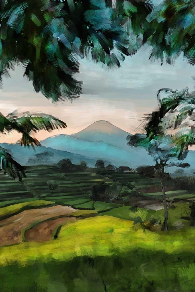 paysage balinais avec volcan et rizières